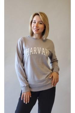 Спортивний батник Grey Harvard (604)